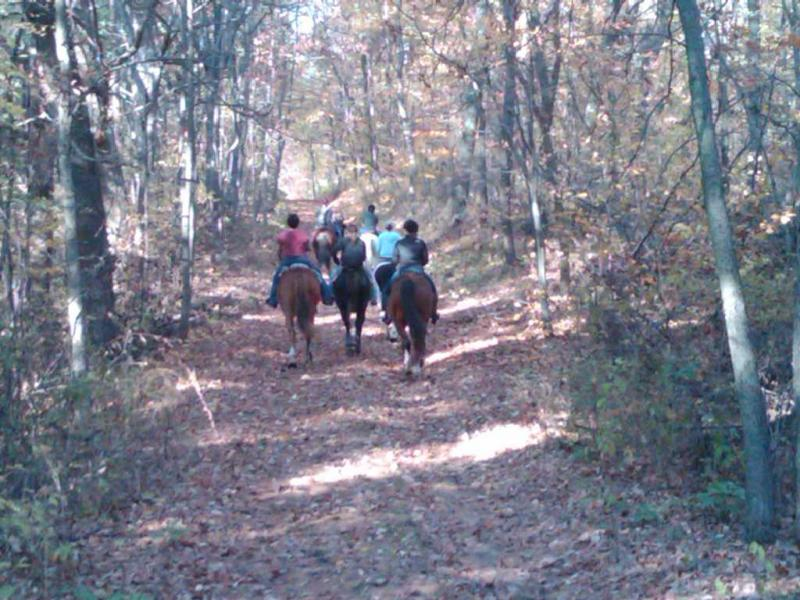 Sassy's Trail